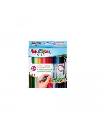 Set creioane colorate Toy Color, 24 culori