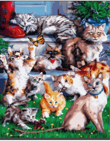 Kit pictura pe numere Cats